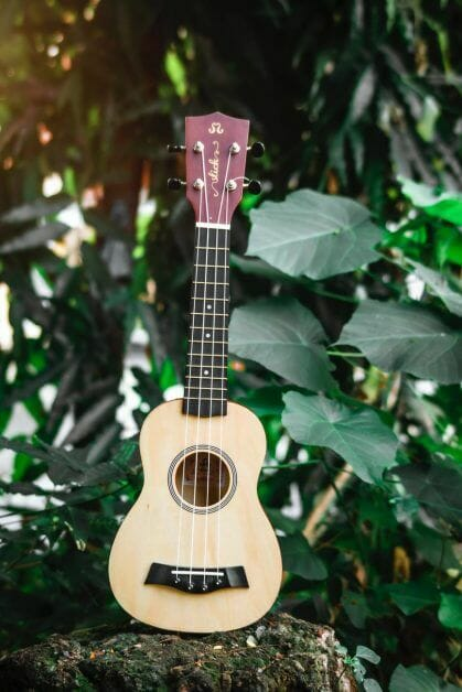 ukulele placed on stone in garden with green plants - Spell Casters with Attitude: Bards